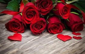 111769 4k Wallpaper Red Flowers Roses Drops 5k Nature