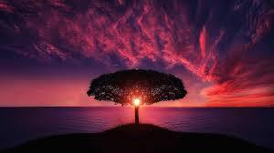sunset hd wallpaper 1080p on