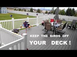 keep birds off the deck railing you
