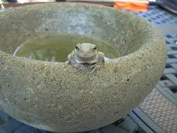 concrete bowls and planters