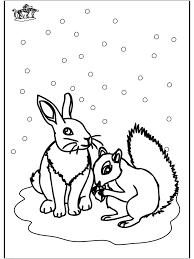 Eekhoorn En Konijn Kleurplaten Winterdieren