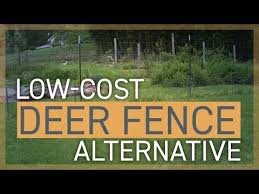 Low Cost Deer Fence Alternative Youtube