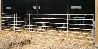 Goat Sheep Panels And Continuous Fence Livestock Fencing Products Qualitylivestockfence Com