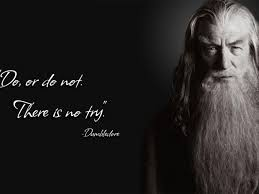 dumbledore quotes we need fun