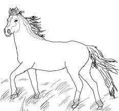 Wilde Mustang Kleurplaat Gratis Kleurplaten Printen