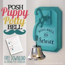 how to potty train a dog to use a bell