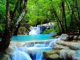 free rainforest waterfall wallpaper
