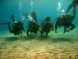Image result for Scuba Diving Thailand