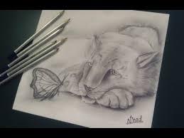 shading a friendly nature drawing