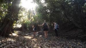 tourist information centre balibarat national park daily tour