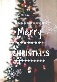 love merry christmas christmas snow photography winter christmas