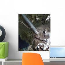Natural Color Chaita N Wall Decal Wallmonkeys Com