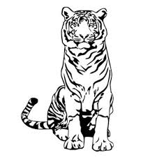 Scratch Proof Printing Promotional Best India Tiger Decal Car Sticker Buy India Car Sticker Tiger Car Sticker Decal Car Sticker Product On Alibaba Com