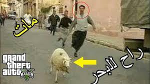 هروب كبش في الجزائر و موته 2020 Gta Youtube