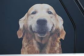 Doggie In The Window Car And Truck Window Dog Decal Golden Retriever Amazon Com