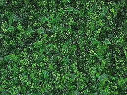 Uland Artificial Hedges Panels Boxwood Greenery Ivy Privacy Fence Screening Love Grass Hedera Home Garden Outdoor Wall Decoration 20 X20 12pcs A009 12 Amazon Co Uk Kitchen Home