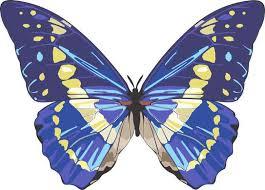 5in X 4in Blue Butterfly Bumper Sticker Car Vinyl Truck Window Decal Sign Stickertalk