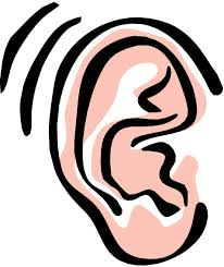 Image result for free images of an ear""