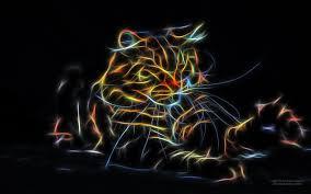 1680x1050 خلفية القط خلفيات جميلة من سطح 7250929