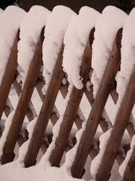 Free Images Branch Snow Cold Winter White Leaf Ice Weather Brown Snowy Twig Icy Freezing Garden Fence Wood Fence Battens 2448x3264 1156931 Free Stock Photos Pxhere