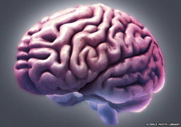 Resultado de imagem para aumentando a capacidade cerebral