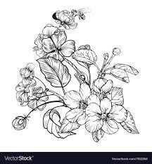 vine elegant flowers black and white