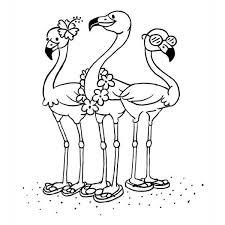 Kleurplaten Flamingo Kleurplaat