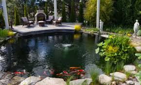 okanagan koi water gardens inc