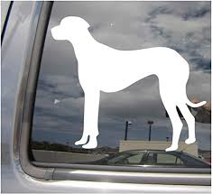 Amazon Com Great Dane Dog Uncropped Ears Deutsche Dogge German Mastiff Apollo Pure Breed Purebred Cars Trucks Moped Helmet Hard Hat Auto Automotive Craft Laptop Vinyl Decal Store Window Wall