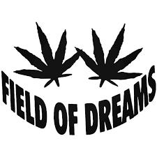 Weed Marijuana Field Dreams Funny Vinyl Decal Sticker