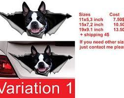 Sticker Boston Terrier Window Sticker Car Sticker Pet Car Etsy In 2020 Boston Terrier Terrier Boston Terrier Dog