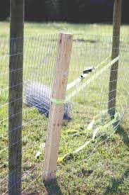 How To Make An Amish Fence Puller Cosmopolitan Cornbread