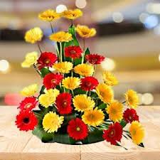 send carnations and gerberas as gifts