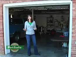 How To Set Up The Petsafe Wireless Fence Petco Youtube