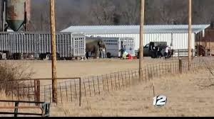 Circus Speaks Out After Trailer Carrying Elephants Breaks Down