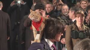 A Street Cat Named Bob: 'Bob whacked the director' - YouTube