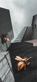 queen bee iphone x wallpapers free