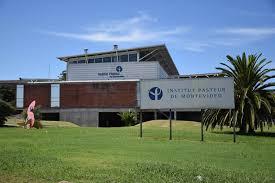 Ciclo de Seminarios del Instituto Pasteur de Montevideo | Portal ...