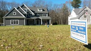 Electric Dog Fences In Southeastern Massachusetts