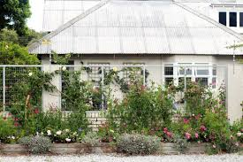 garden ideas to steal from south africa