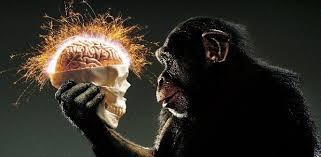 EVOLUCIÓN DEL PENSAMIENTO CIENTÍFICO, SALUD, MEDICINA