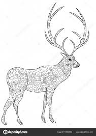 Deer Coloring Book Vector For Adults Stock Vector