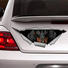 Dachshund Decal Dog Car Decal Vinyl Decal Car Decoration Etsy