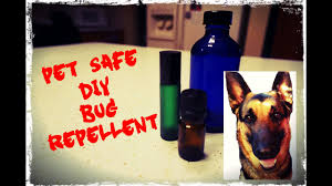 natural dog friendly bug repellent