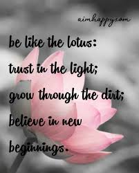 lotus flower quotes to inspire growth new beginnings lotus