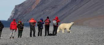Walking With Polar Bears A Dangerous Trend Bearsmart Com