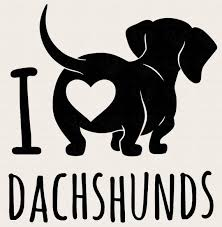 Dachshund Decal Dachshund Sticker Dachshund Car Decal Etsy