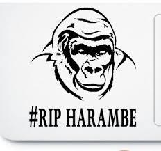 H16 Rip Harambe Sticker For Apple Macbook Pro Air Retina Vinyl Notebook Reflective Car Decal Sticker Aliexpress