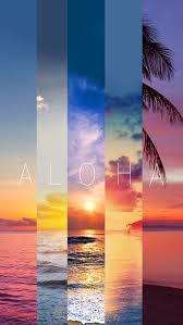 45 desktop images of summer summer