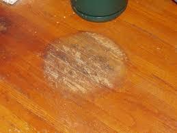wood floor maintenance wood expert